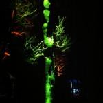 Objektbeleuchtung Baum hellgrün